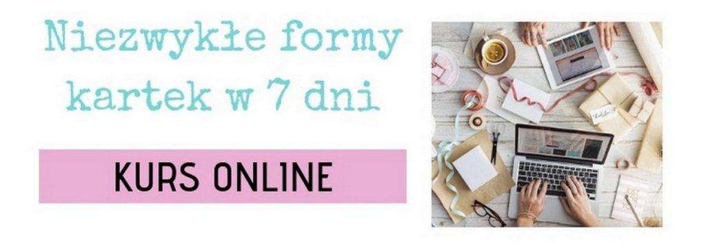 produkt kurs online wns