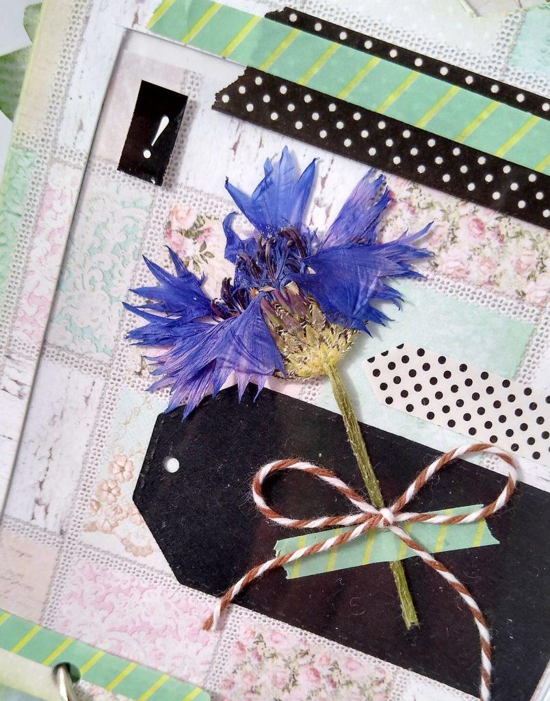 strona albumiku z suszonym kwiatkiem